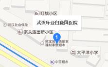 武汉环亚中医白癜风医院地图